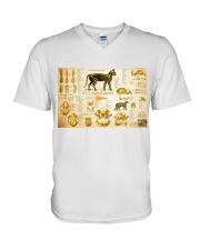 Veterinarian cat skeleton anatomy pt mttn-nth V-Neck T-Shirt tile