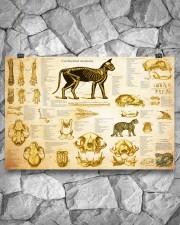 Veterinarian cat skeleton anatomy pt mttn-nth 24x16 Poster aos-poster-landscape-24x16-lifestyle-14
