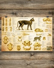 Veterinarian cat skeleton anatomy pt mttn-nth 24x16 Poster aos-poster-landscape-24x16-lifestyle-15