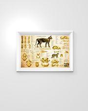 Veterinarian cat skeleton anatomy pt mttn-nth 24x16 Poster poster-landscape-24x16-lifestyle-02