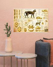 Veterinarian cat skeleton anatomy pt mttn-nth 24x16 Poster poster-landscape-24x16-lifestyle-22