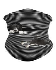 Border Collie Striped T821  Neck Gaiter thumbnail