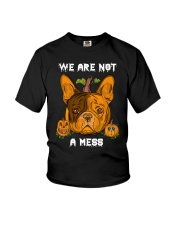 French Bulldog We are not a mess Youth T-Shirt thumbnail