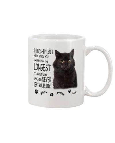 Black Cat Longest