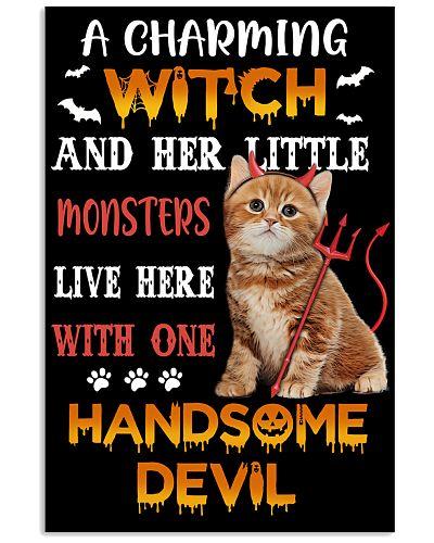 Cat Handsome Devil