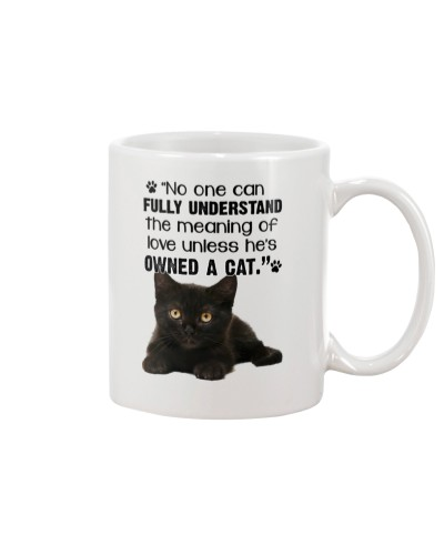 Owned Cat will Know