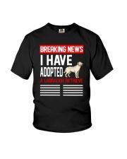 DOGS - LABRADOR RETRIEVER - BREAKING NEWS Youth T-Shirt thumbnail