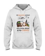 Guinea Pigs Run On Hooded Sweatshirt thumbnail