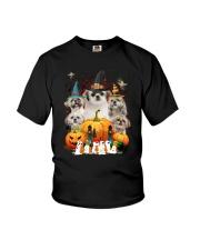 Shih Tzu Great Pumpkin Youth T-Shirt thumbnail