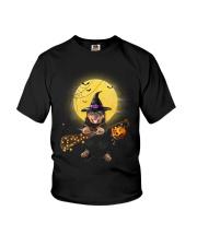 Rottweiler Witch got stuck  Youth T-Shirt thumbnail