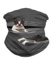 Boston Terrier Striped T821  Neck Gaiter tile