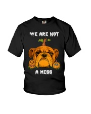 Bulldog We are not a mess Youth T-Shirt thumbnail