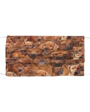 Rhodesian Ridgeback Awesome H25858 Cloth face mask front