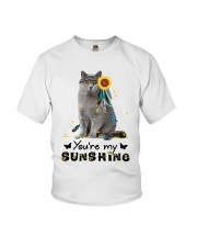 Cat - You are my sunshine Youth T-Shirt thumbnail