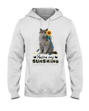 Cat - You are my sunshine Hooded Sweatshirt thumbnail