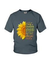 Family Crazy Grandma Youth T-Shirt thumbnail