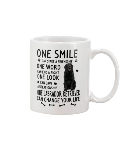 Labrador Retriever Change Life