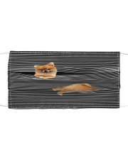 Pomeranian Striped T821  Cloth face mask front