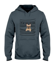 French Bulldog In The Blinds  Hooded Sweatshirt thumbnail