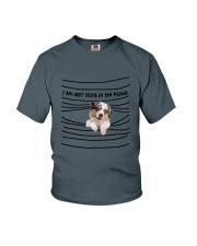 Australian Shepherd In The Blinds  Youth T-Shirt thumbnail