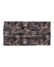 Boykin Spaniel Awesome H25860 Cloth face mask front