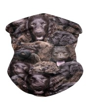 Boykin Spaniel Awesome H25860 Neck Gaiter thumbnail
