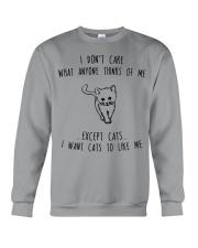 I Want Cats To Like Me Crewneck Sweatshirt thumbnail