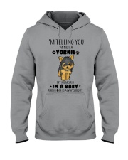 I'm A Baby Hooded Sweatshirt thumbnail
