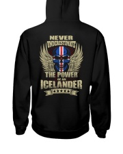The Power - Icelander Hooded Sweatshirt back