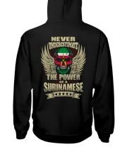 The Power - Surinamese Hooded Sweatshirt back