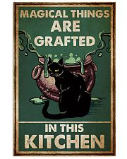 Cat Magical Poster 16x24 Poster front