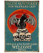 Cat Salem Sanctuary Poster 16x24 Poster front