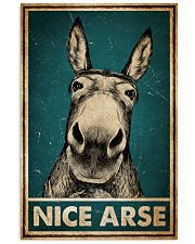 Donkey Nice Arse 11x17 Poster front