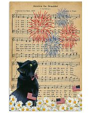Black Cat American The Beautiful 16x24 Poster front