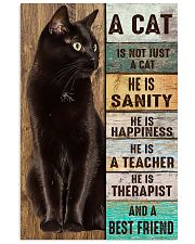 A Cat Is Not Just A Cat 16x24 Poster front