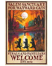 Cat Salem Sanctuary  16x24 Poster front