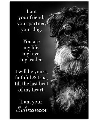Dog Schnauzer I Am Your Friend