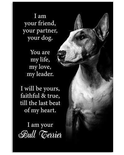 Dog Bull Terrier I Am Your Friend