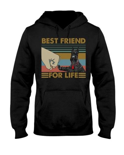 Dog Schnauzer Best Friend For Life
