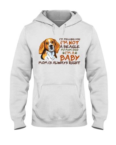 Dog Beagle I'm A Baby