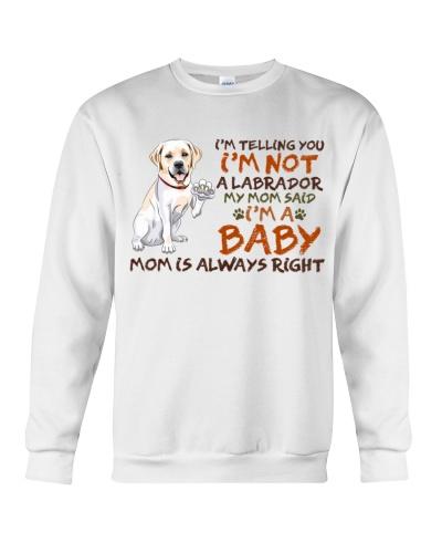 Dog labrador I'm A Baby