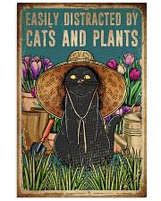 Cats And Plants 16x24 Poster front