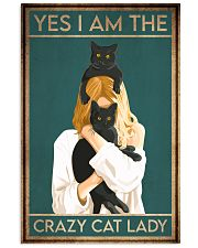 Cat Yes I Am The Crazy Cat Lady 16x24 Poster front