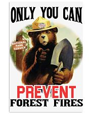 Only you can prevent forest fires 11x17 Poster thumbnail