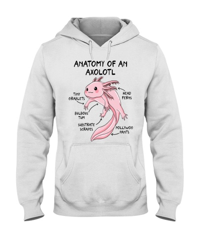 Animal Anatomy Of An Axolotl