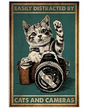 Cats And Cameras 16x24 Poster front