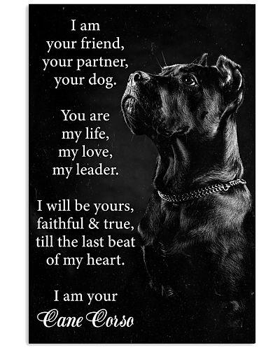 Dog cane corso I Am your Friend