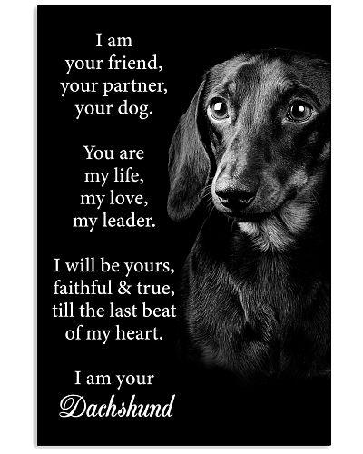 Dog Dachshund I Am Your Friend
