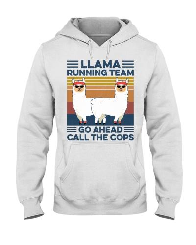 Running Llama Running Team