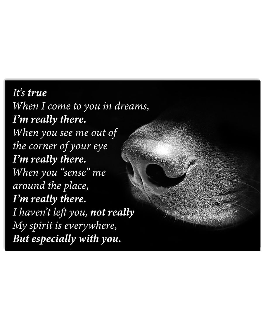 Dog I'm Really There 24x16 Poster